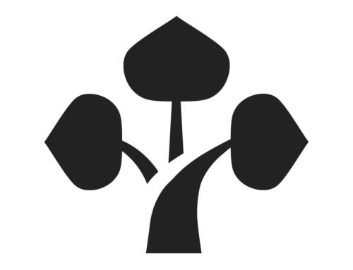 BONSAÏ AU JAPON – BONSAÏ EMPIRE