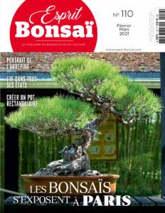 Article de Jean-Yves LAMUSSET - Paru dans le magazine Esprit Bonsaï numéro 110. (6 pages : pages 10-15)