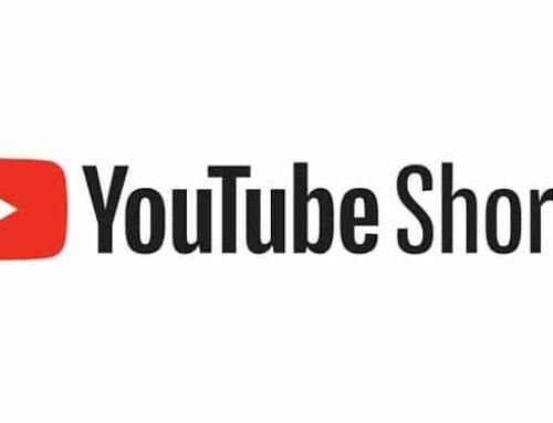 Les YouTube Shorts de bonsaiculture